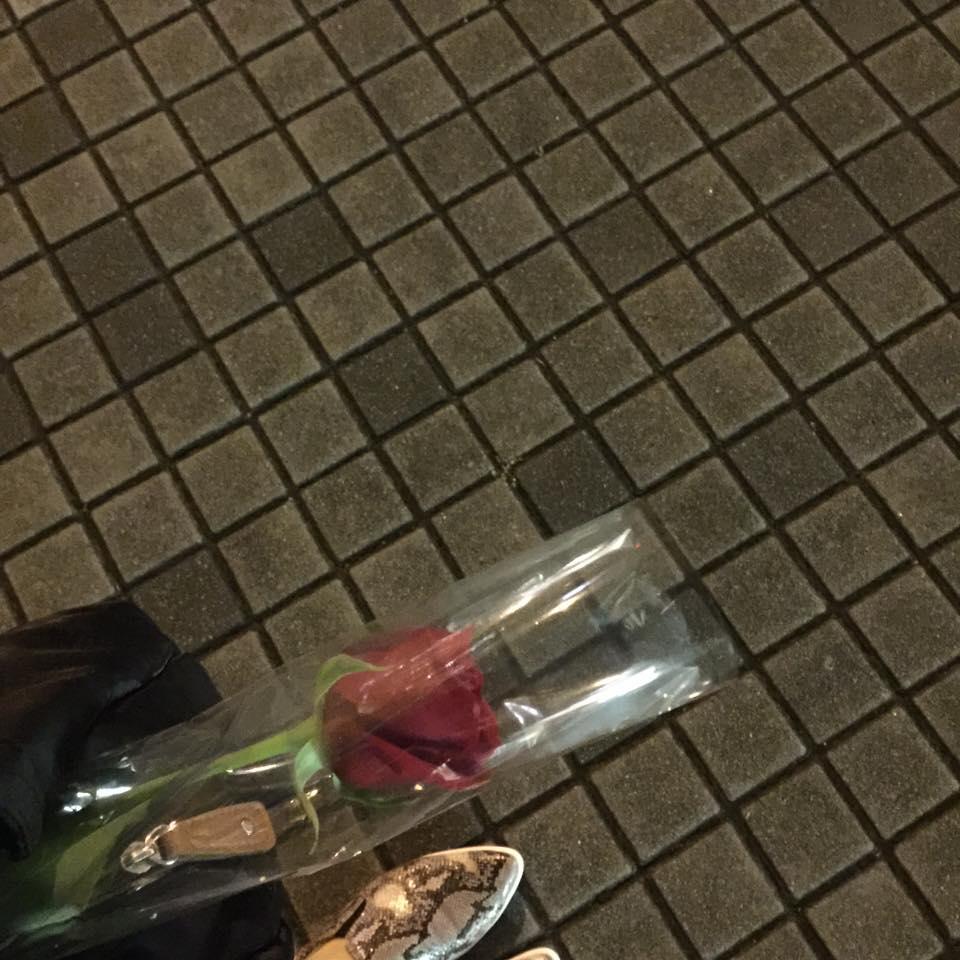 真紅のバラを一輪、いただいた件。