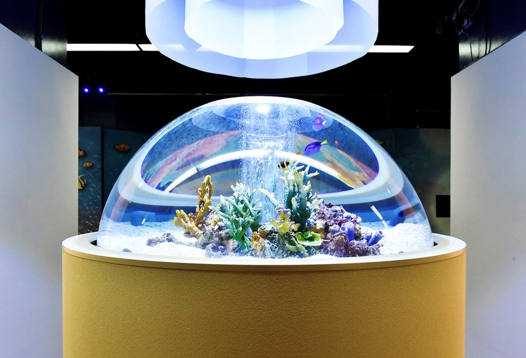 """小さくて可愛い生き物たちが""""ぎゅぎゅっ""""と集合! 『海遊館』で企画展示「ぎゅぎゅっとキュート」開催!"""