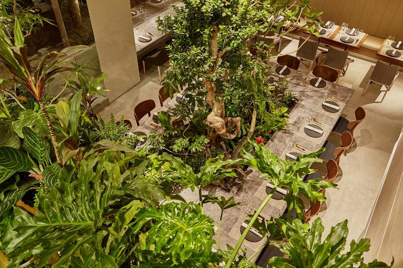 森×中華×美酒×ゴルフ!? まるで植物園のような中国料理店『熱香森(ラシャンセン)』、8/6(日)オープン!