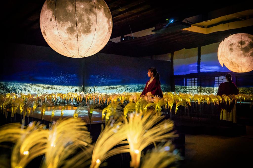 この感動は12/9(日)まで!「秋季特別ライトアップ FLOWERS BY NAKED 2018 —京都・二条城—」開催中
