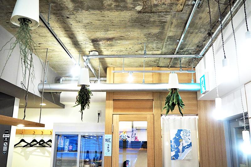 パイプや逆さの植物がユニークな店内