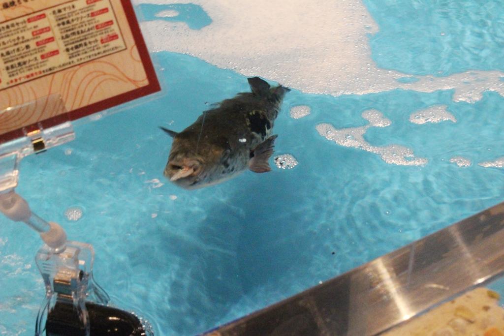 釣り体験 2