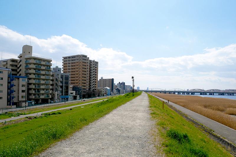 淀川の河原