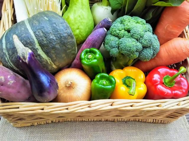 《米・野菜の保存》じゃがいもやキャベツの上手な保存法まとめ