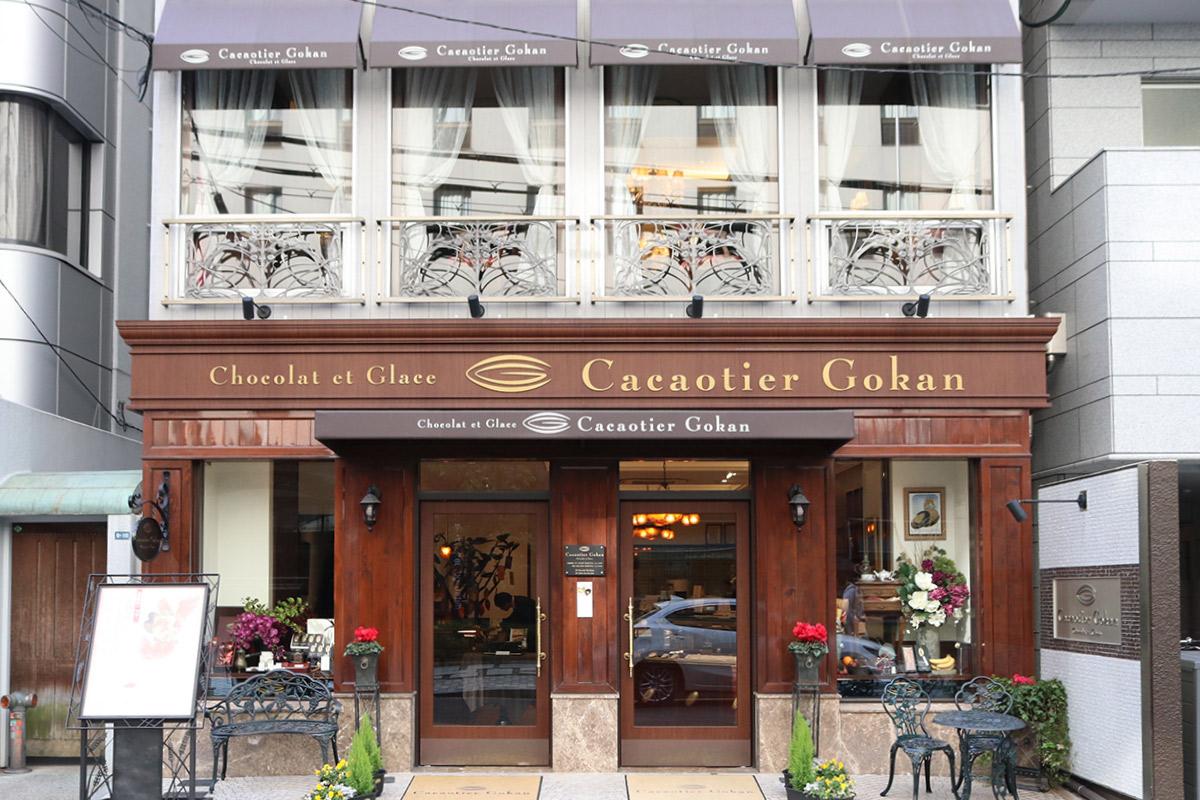 Cacaotier Gokanの外観