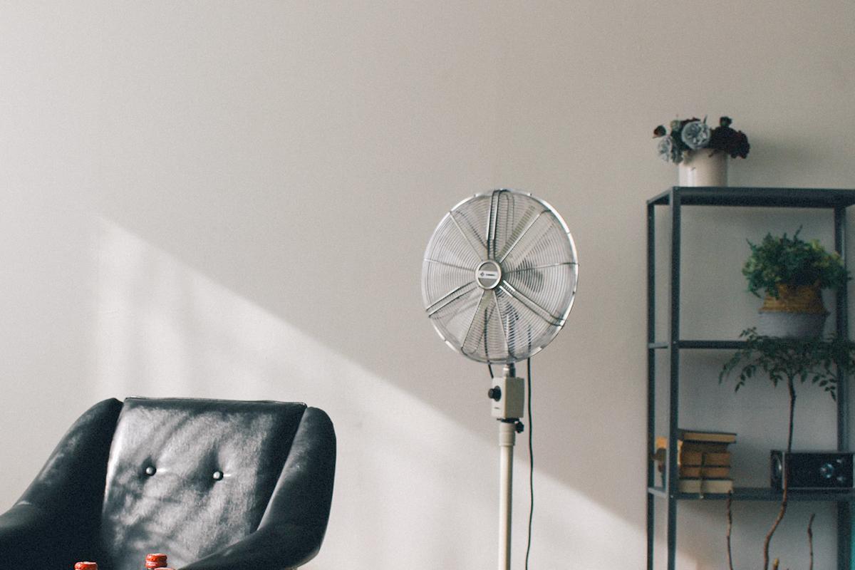 扇風機を当てて乾かす