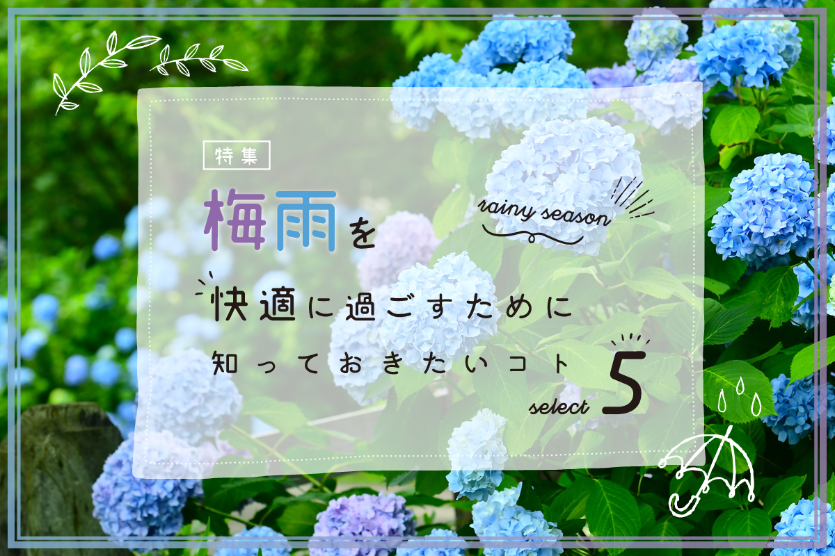 【特集】梅雨を快適に過ごすために知っておきたいコト5選