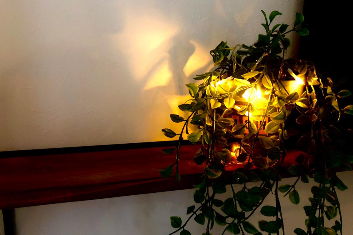 観葉植物とライト