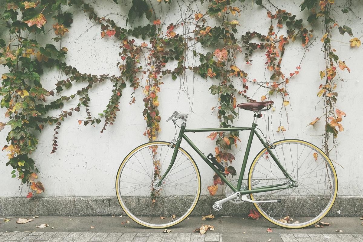 自転車保険まとめ