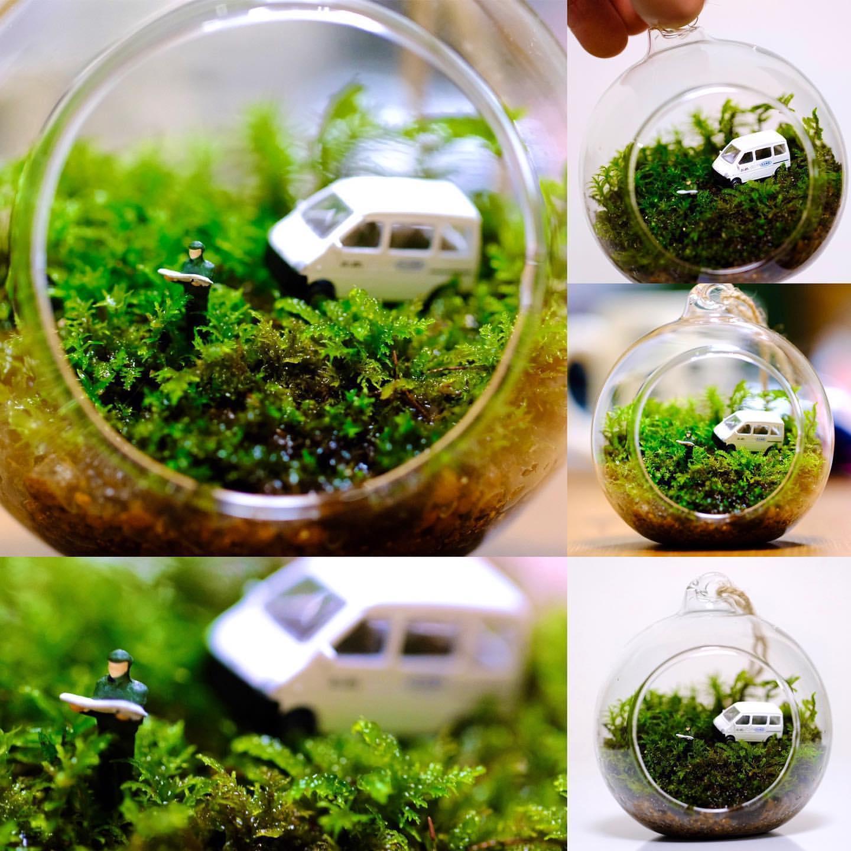 グリーン+水槽2
