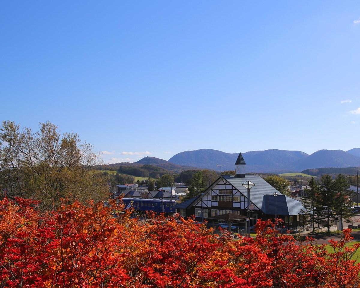 北海道中頓別町の紅葉