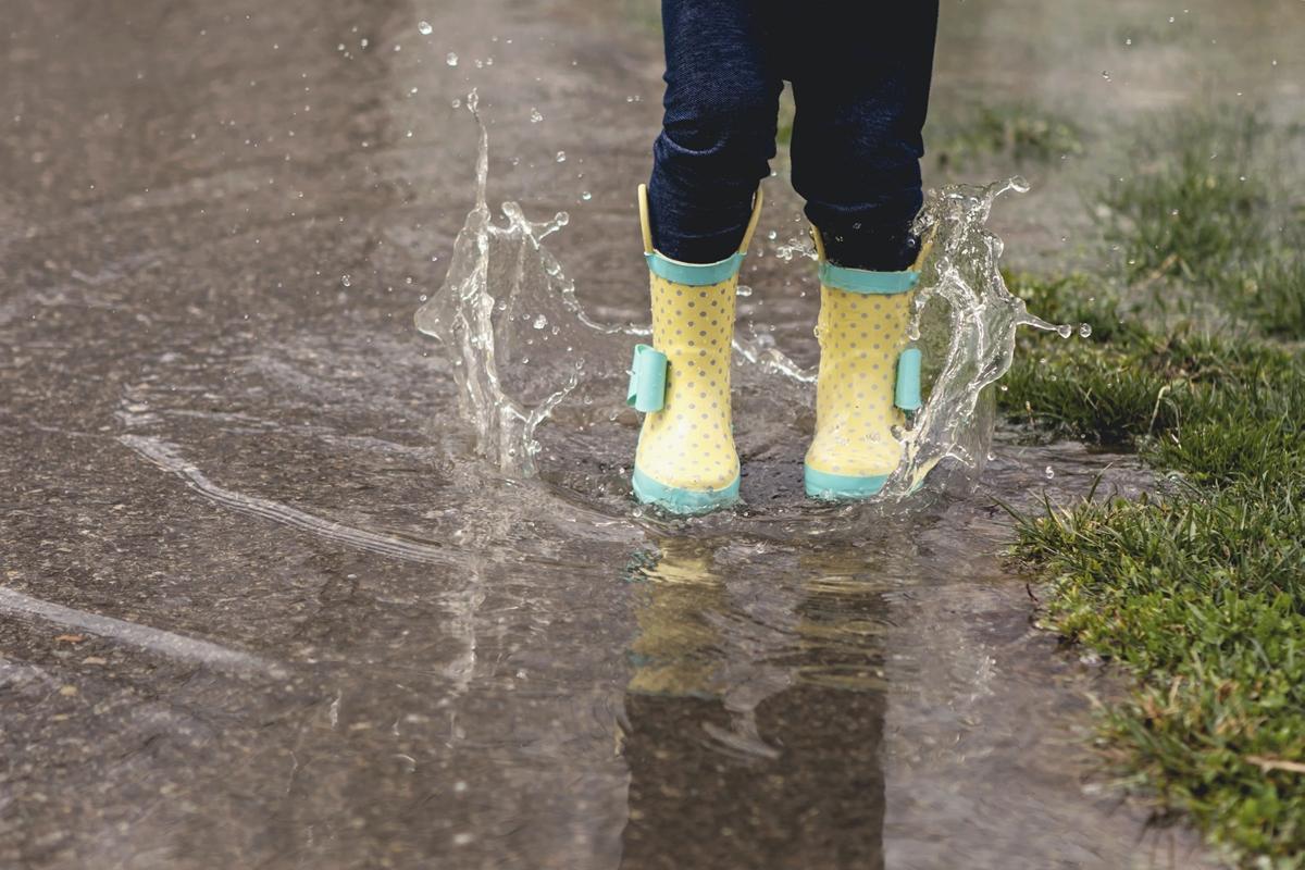 雨による災害は水災(水害)