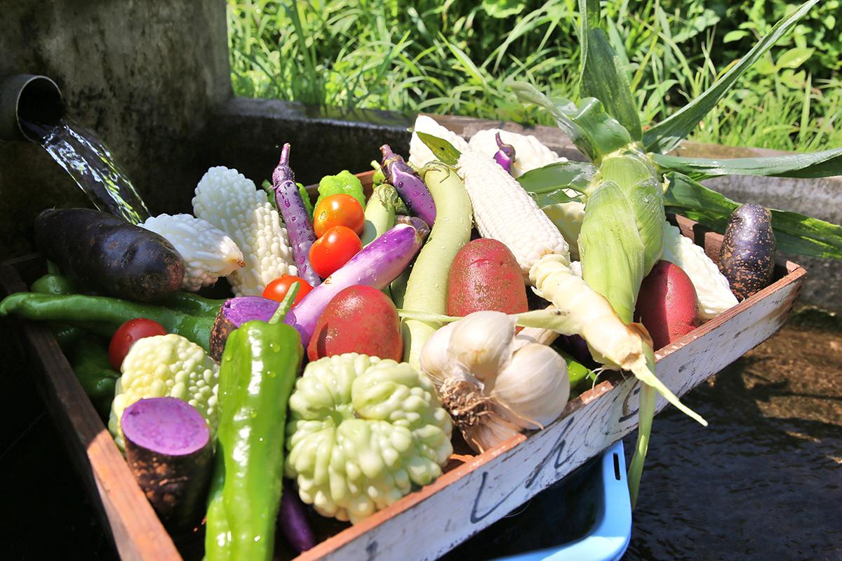 ゆあむの新鮮野菜