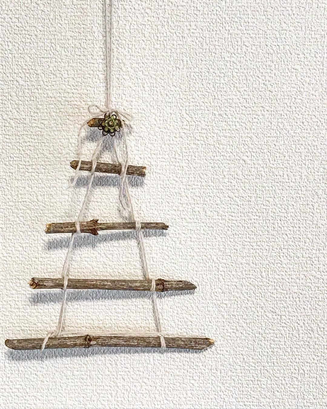 枯れ枝×ウォールツリー