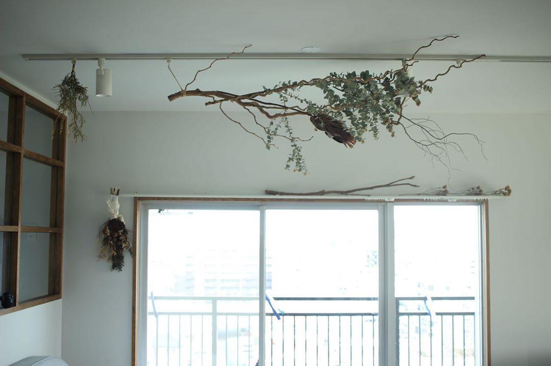 天井に木のインテリア