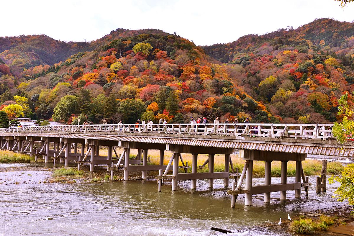 秋の紅葉は嵐山へ!地元ホテルスタッフがオススメする観光スポット