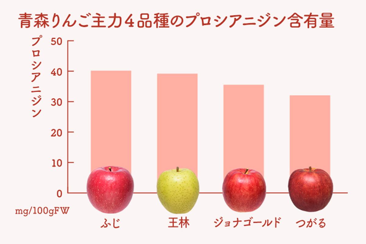 りんごのプロシアニジン