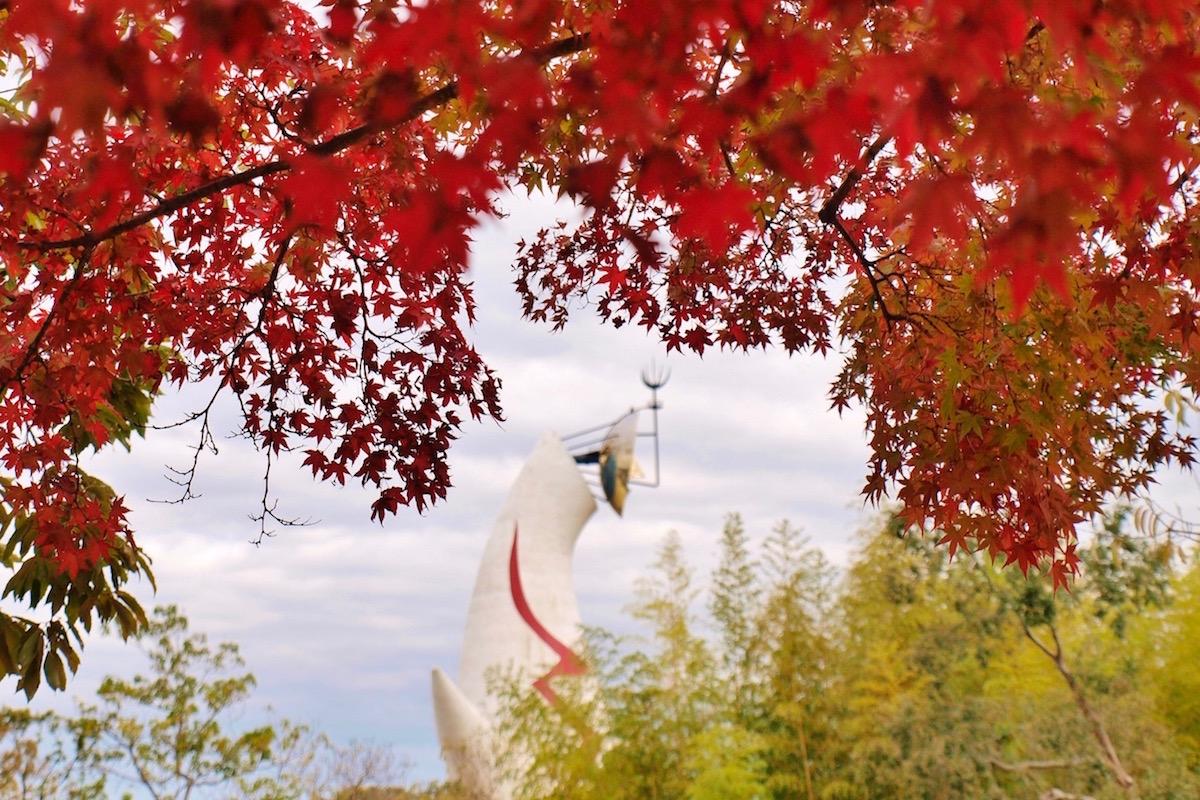 太陽の塔こ紅葉