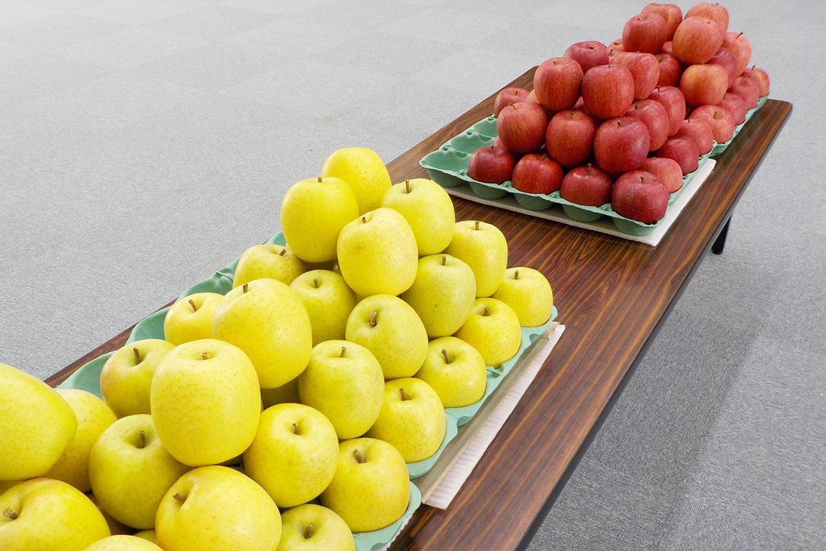 食育授業のお土産のりんご