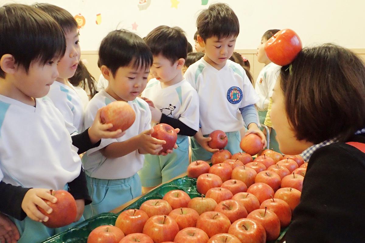 りんご食育授業の男の子