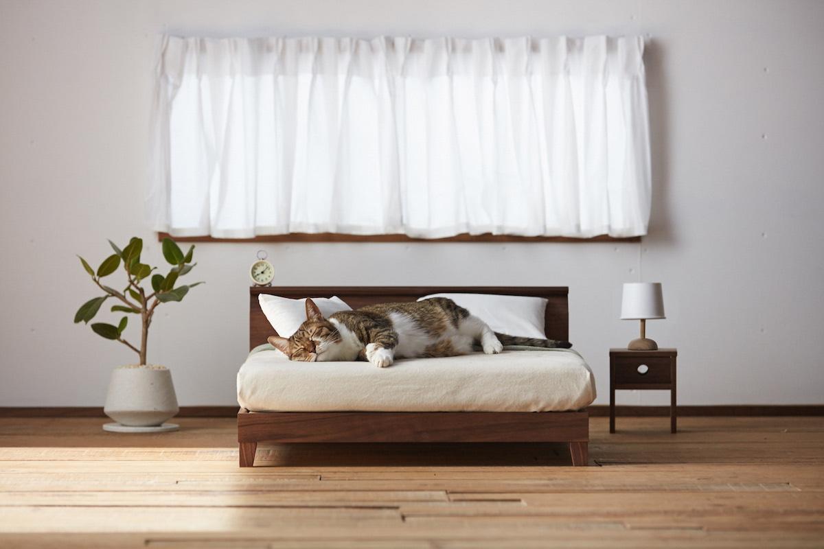ネコ家具ベッド