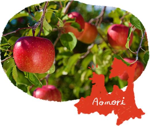 青森県とリンゴ農園