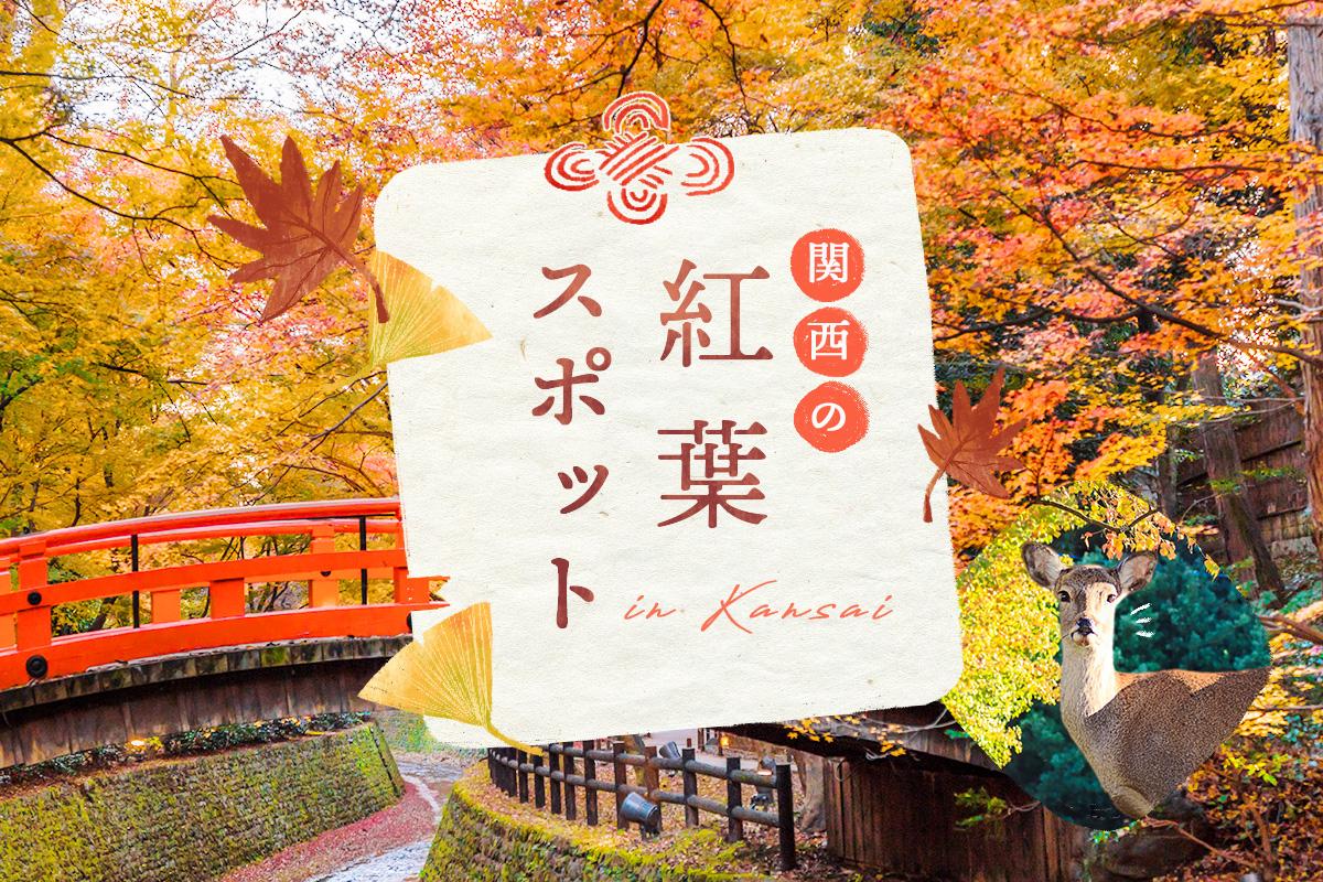 【関西紅葉】週末に行きたい!関西にある紅葉スポットまとめ