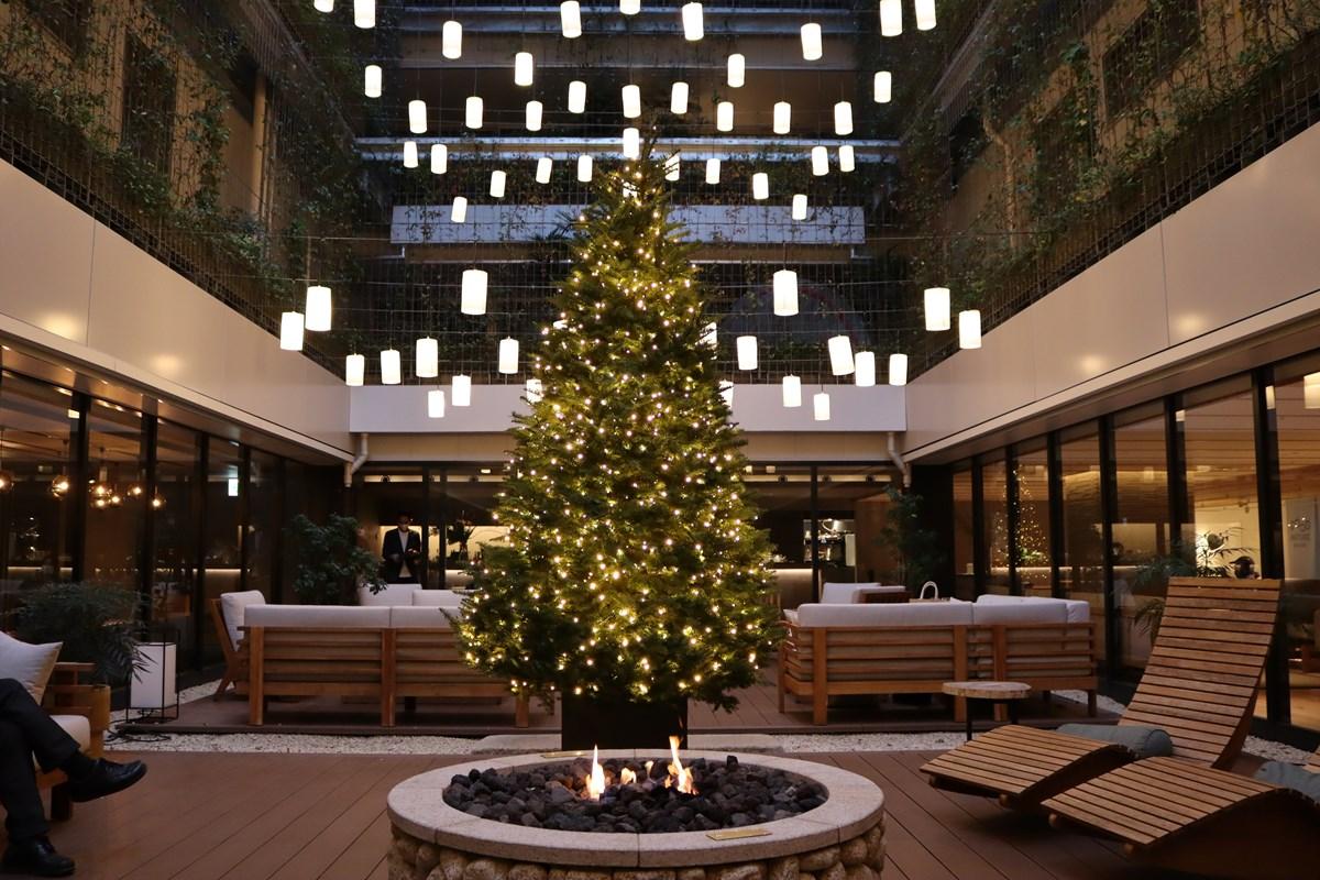 GOOD NATURE STATION クリスマスイルミネーション