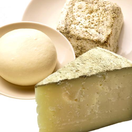 大分チーズ