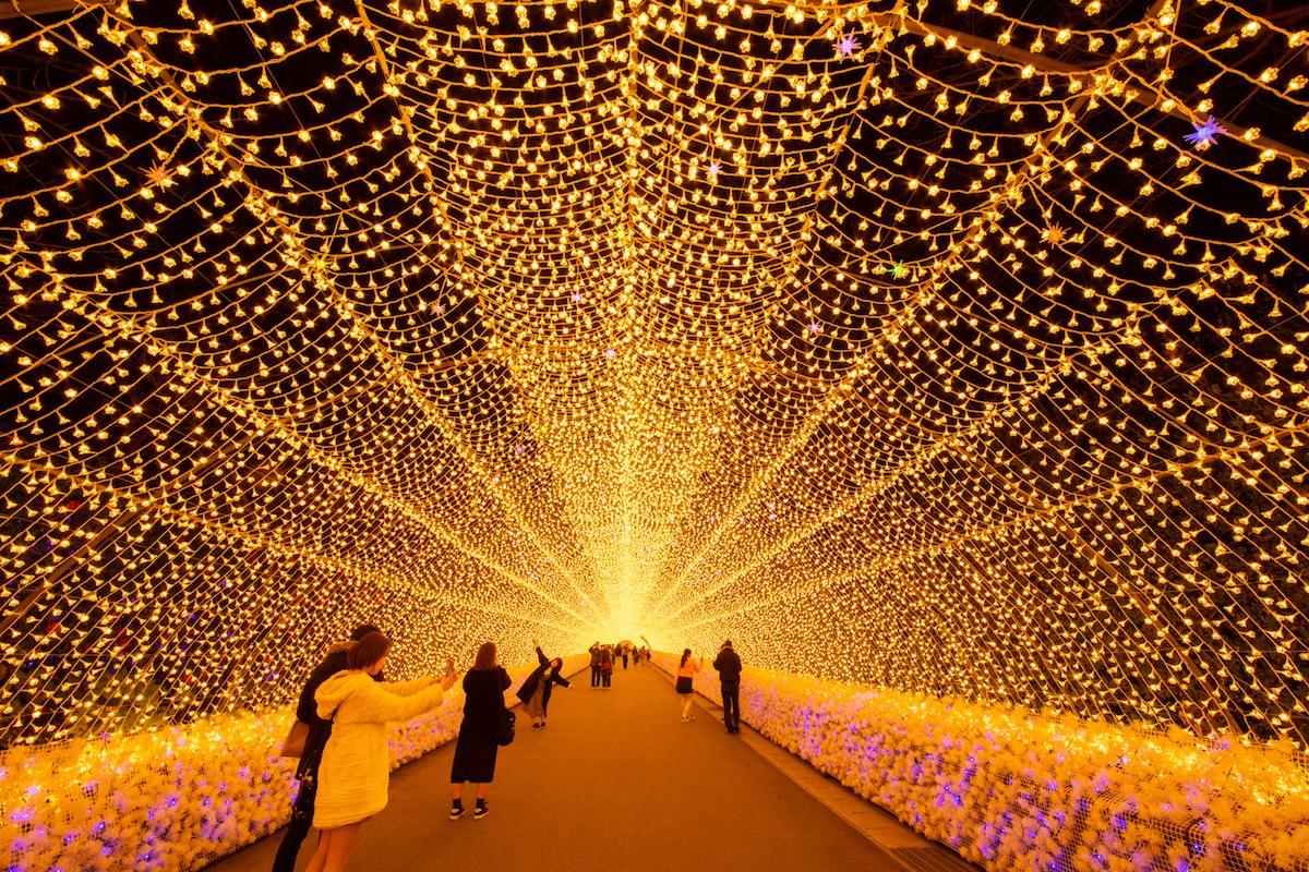 【2020】三重・滋賀・和歌山で楽しめるイルミネーションスポット厳選5選