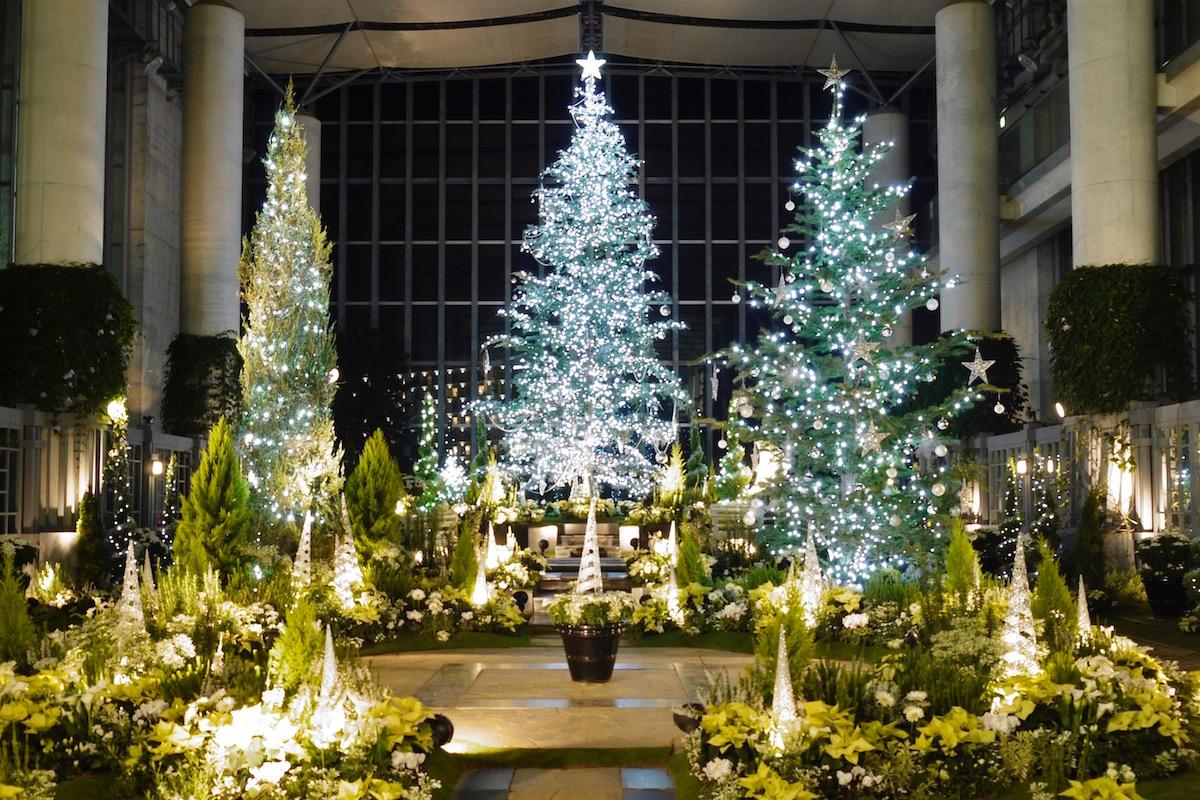 クリスマスフラワーショー2020