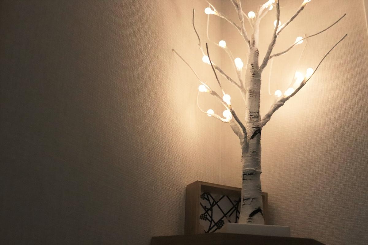 ライトをつけたシラカバツリー
