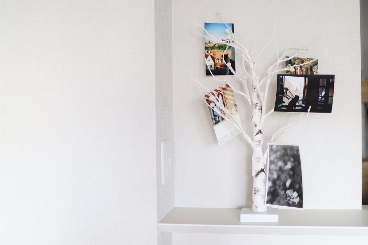 シラカバツリーに写真を飾る