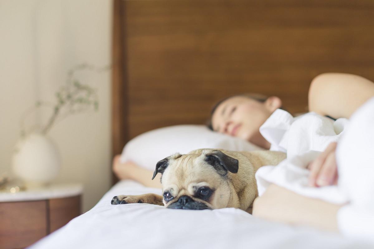 【質のいい睡眠は美肌に繋がる!?】冬こそ眠りのメリットを意識しよう