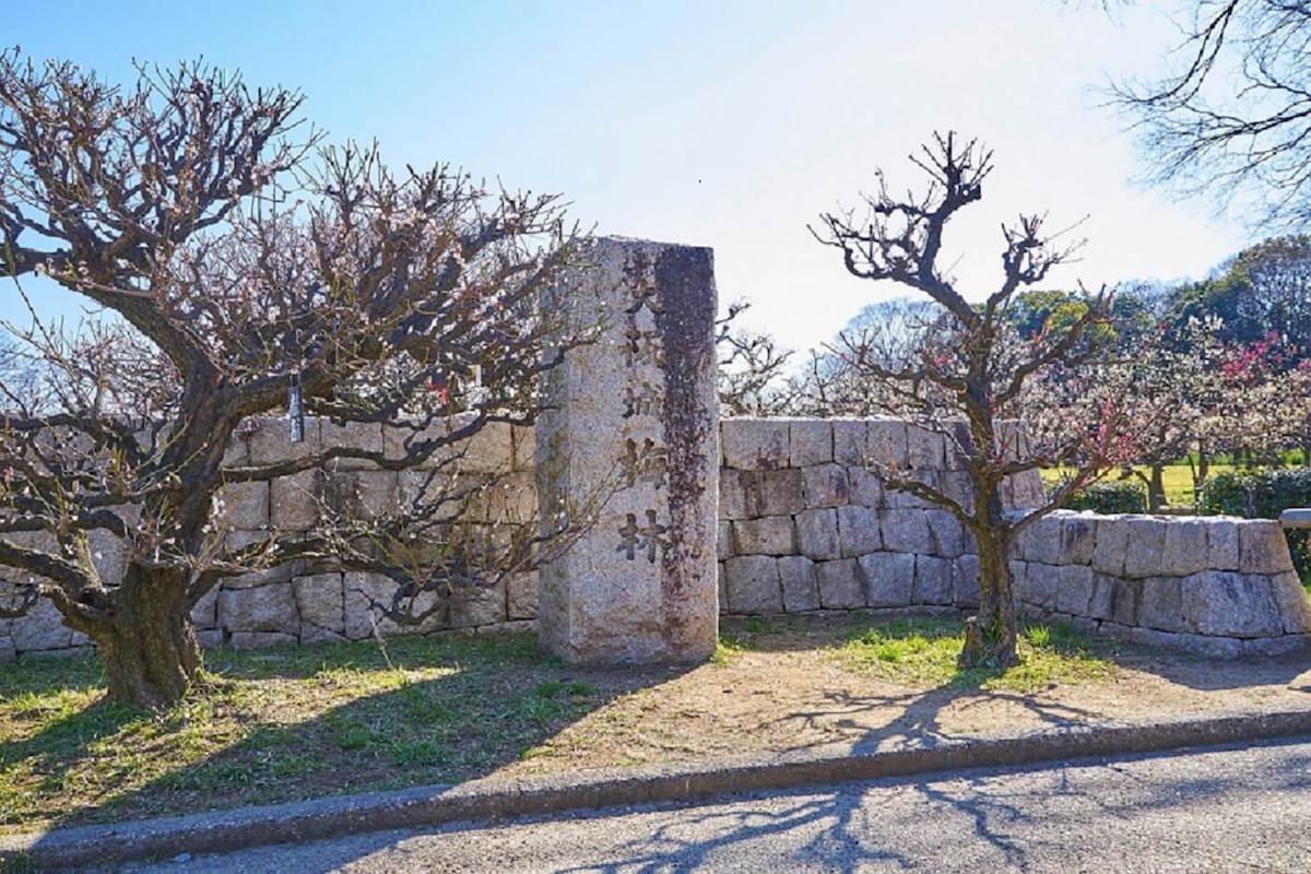 大阪城公園の梅園