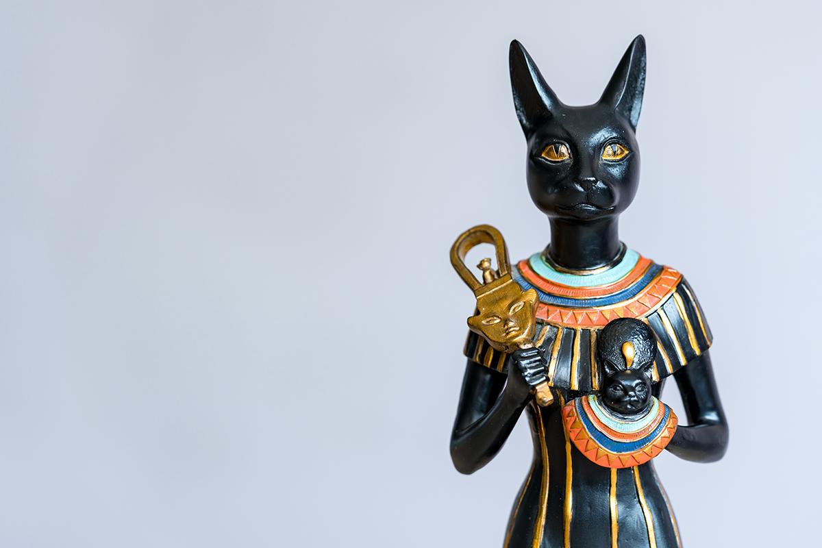 猫の雑学の歴史