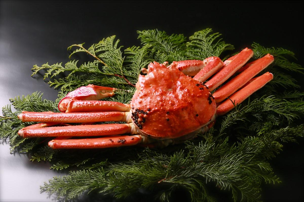 鳥取の冬の味覚の王様松葉ガニ