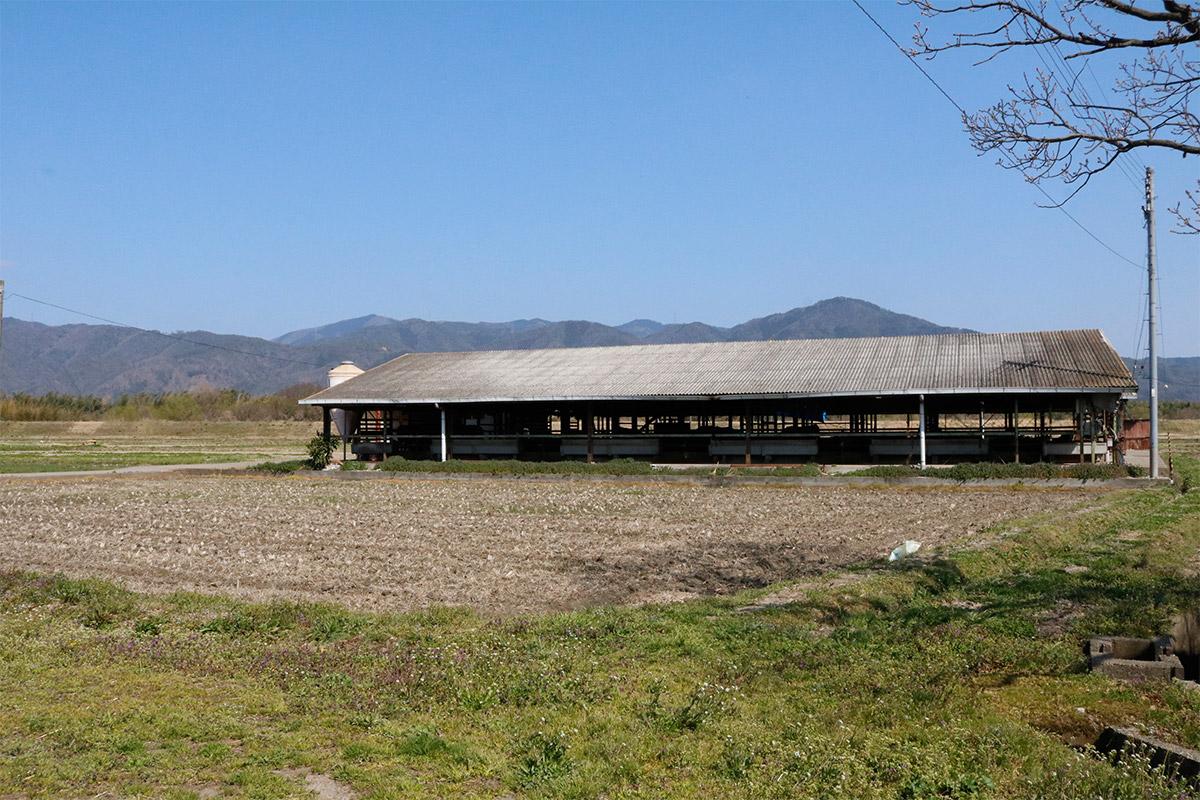 亀岡牛人見畜産の牛舎