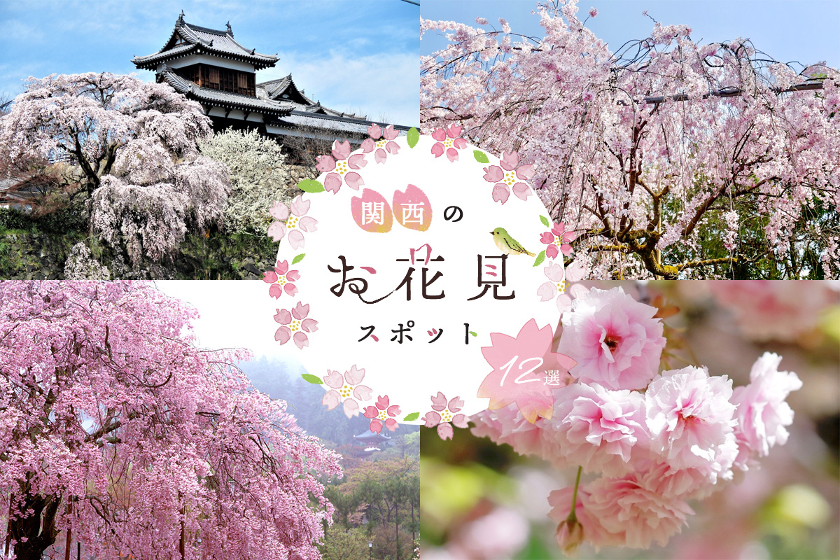 【関西まとめ】2021お花見スポット!定番から穴場まで桜の名所12選