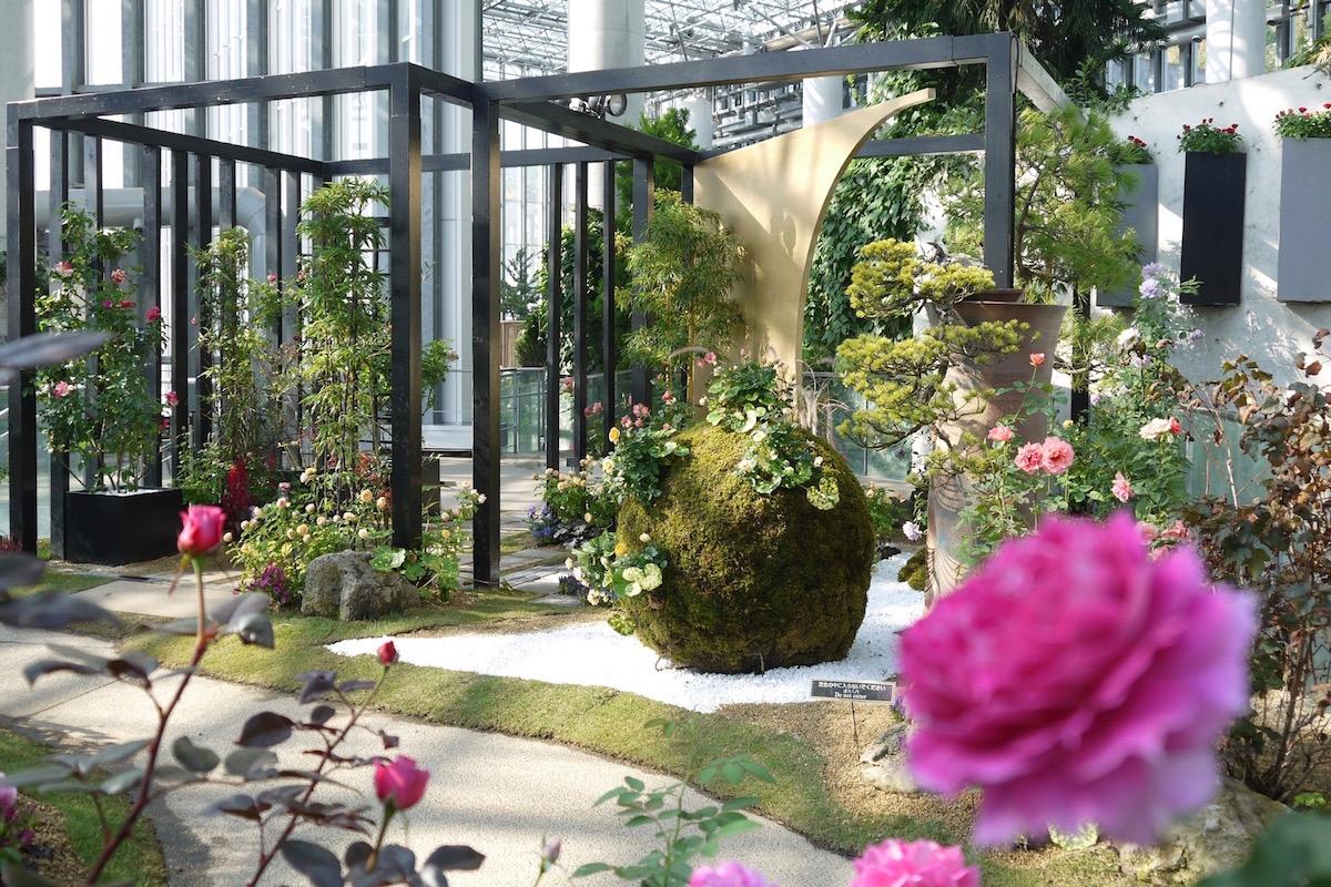 和のバラの庭