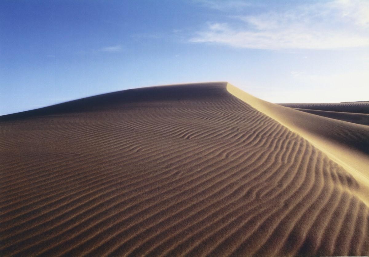 鳥取県を代表する観光地鳥取砂丘