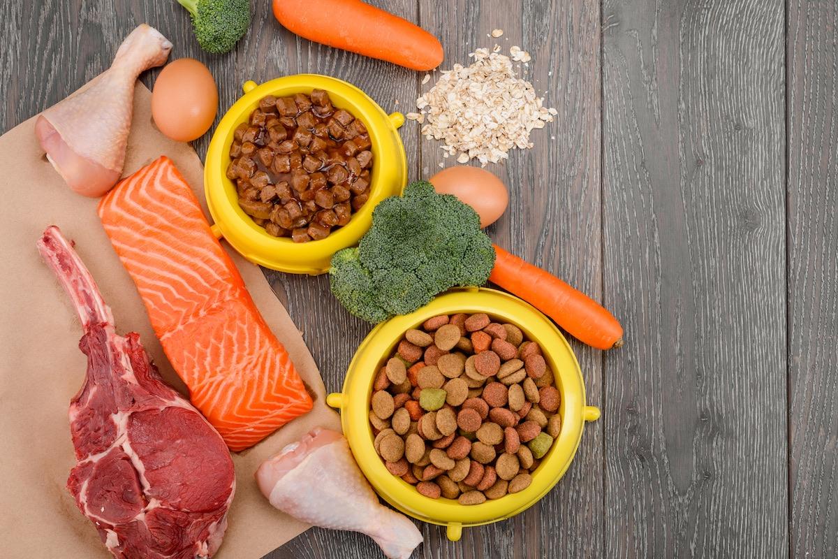 キャットフードと栄養素
