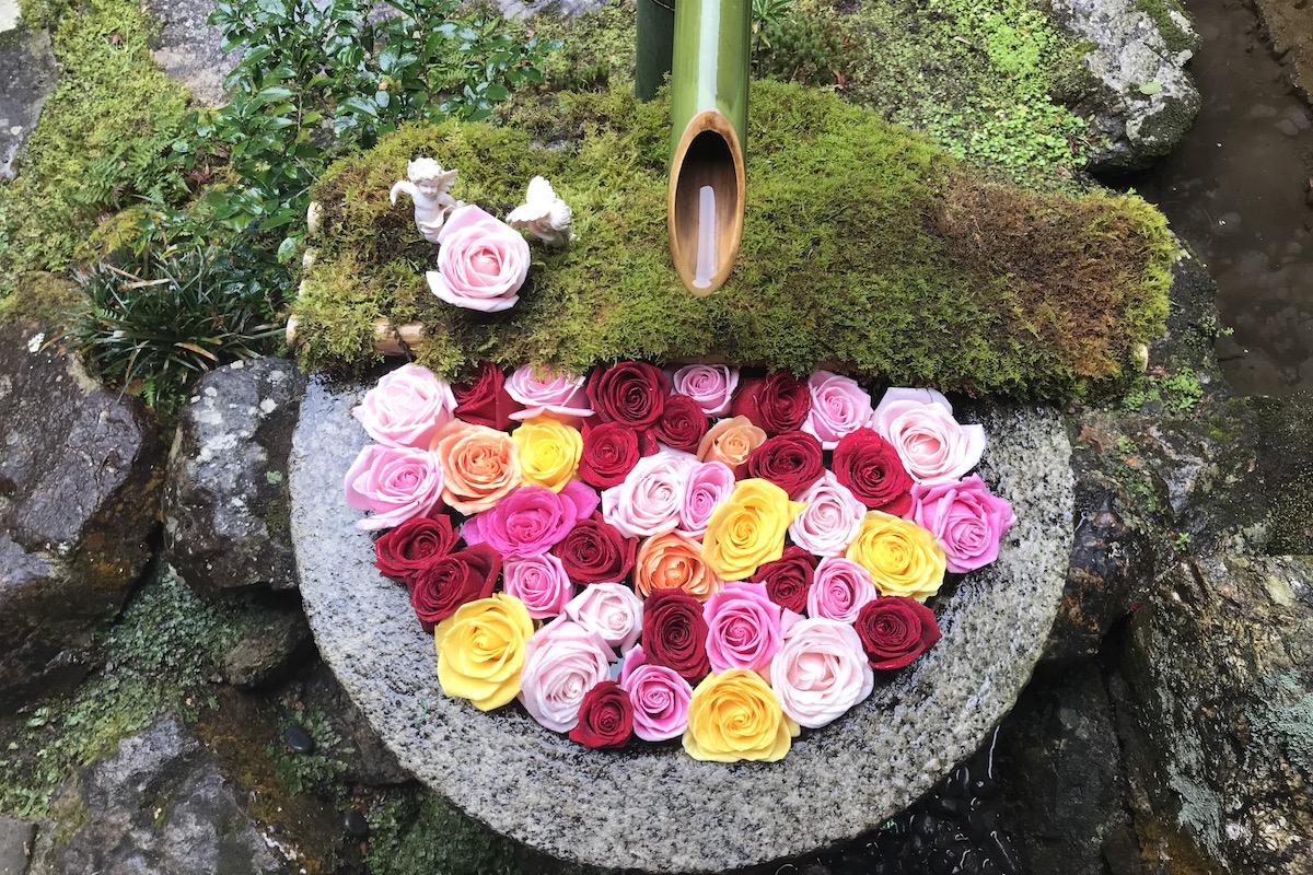 楊谷寺バラの花手水