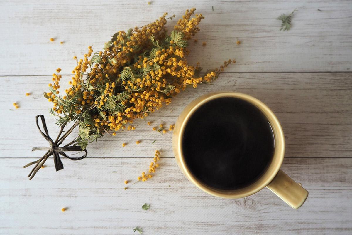 一杯のコーヒーからサステナブルを考える #2