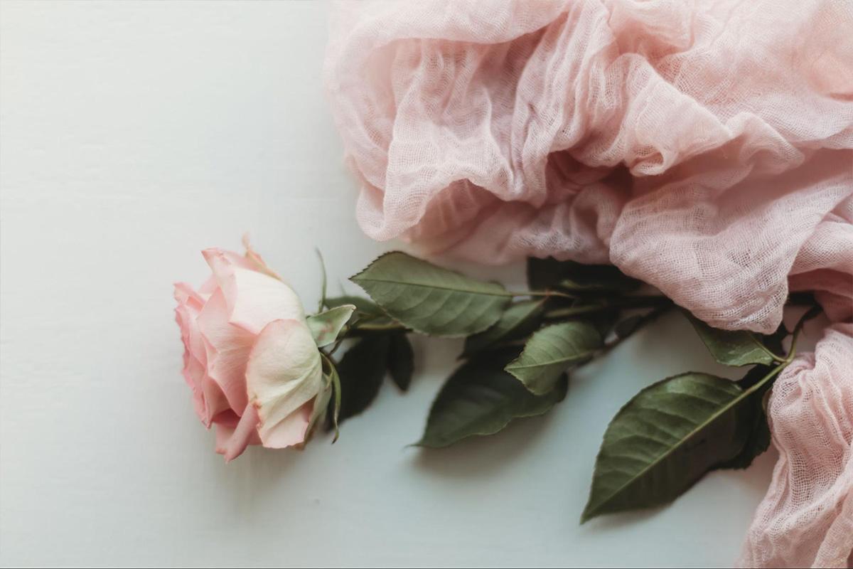 ピンクのバラとピンクのスカーフ