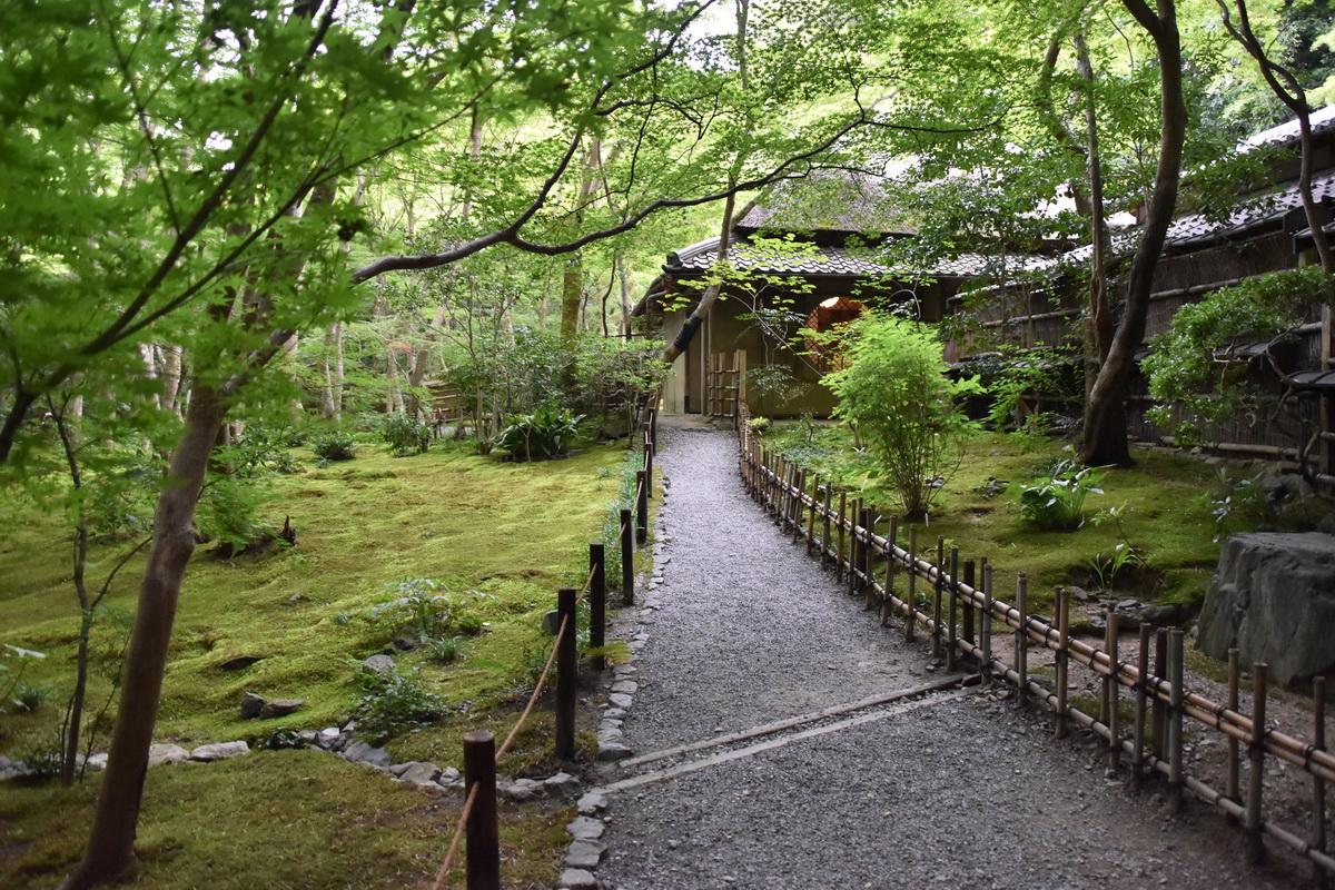 祇王寺の通路両脇に広がる苔絨毯
