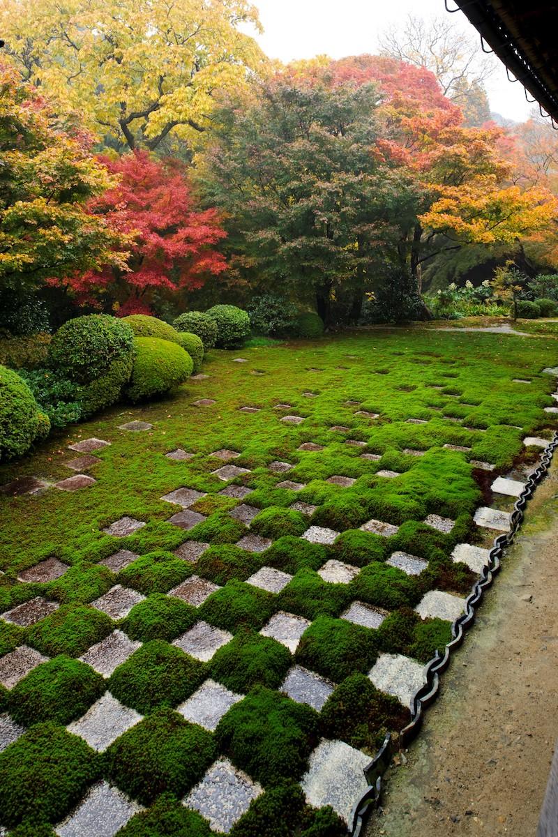 次第に疎らになっていく東福寺の市松模様苔