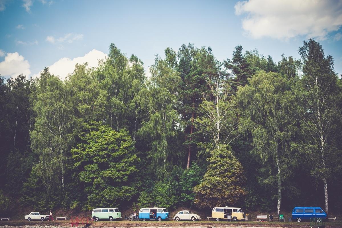 自然に囲まれたキャンプ場の様子