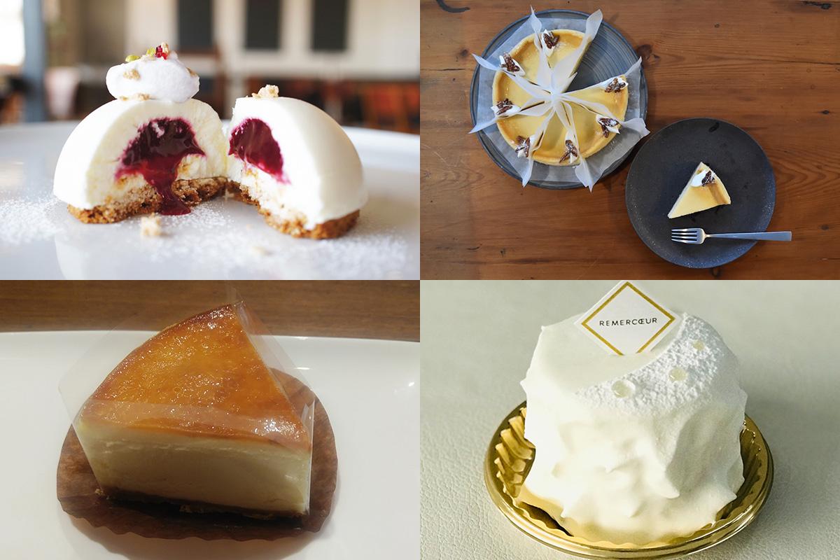 【西宮】美味しいチーズケーキが食べられるお店5選