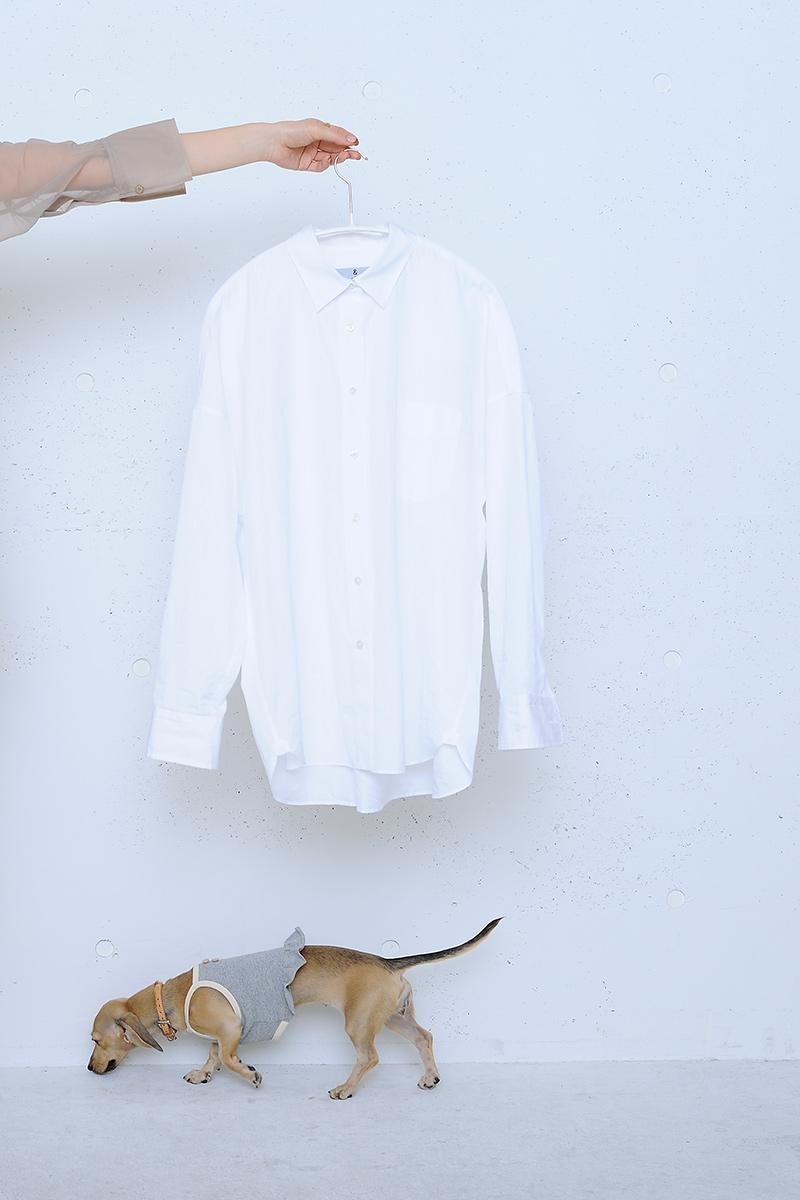 カレンソロジーの白シャツ